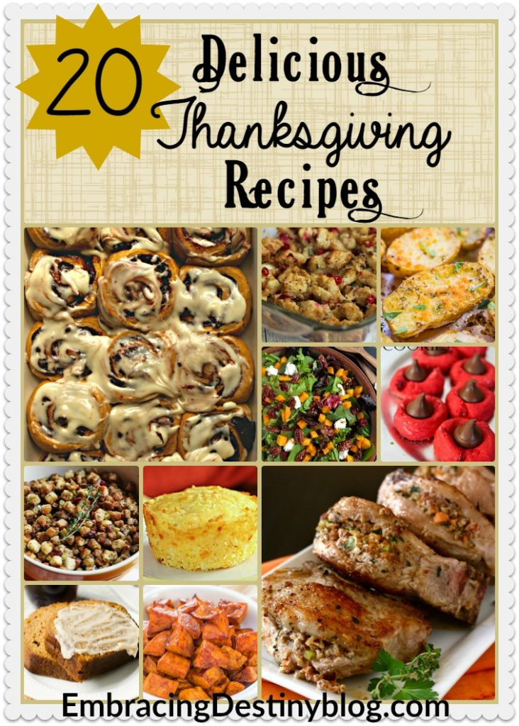 20 Delicious Thanksgiving Recipes from main dishes to sides to desserts. Yummy and perfect for the holidays! embracingdestinyblog.com