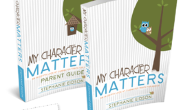 My Character Counts -- teach your kids that character matters with this in-depth study of positive character traits. Bible based.